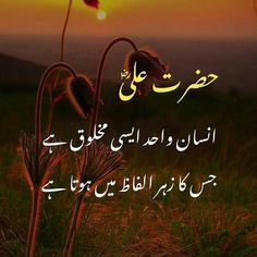 Urdu Quotes With Images, Love Quotes In Urdu, Inspirational Quotes Wallpapers, Muslim Love Quotes, Love In Islam, Poetry Quotes In Urdu, Dream Quotes, Islamic Love Quotes, Islamic Inspirational Quotes