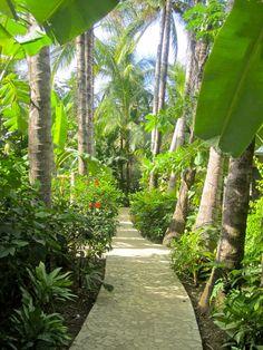 Harmony Hotel, Costa Rica