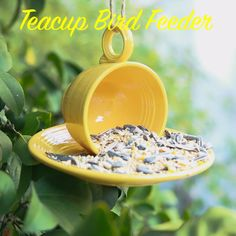 Here Is How To Create Your Own Teacup Bird Feeder