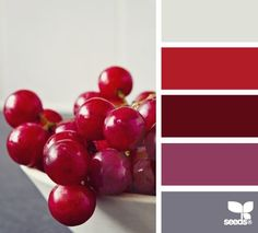 berry hues on Design Seeds - bright red grapes are a fun inspiration for a summer color palette Red Colour Palette, Grey Palette, Colour Schemes, Color Combos, Color Patterns, Design Seeds, Color Harmony, Colour Board, World Of Color