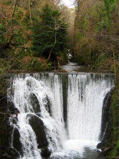 Alva Glen in Clackmannanshire, Scotland