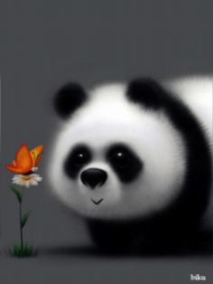 Cute Panda with a Butterfly Happy Birthday Images, Happy Birthday Greetings, Birthday Pictures, Birthday Wishes, Image Panda, Cute Panda Wallpaper, Panda Art, Panda Wallpapers, Panda Love