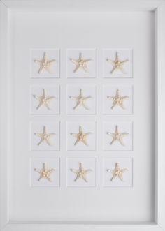 White Mini Starfish with White Shadow Box Frame -Inside Avenue $566