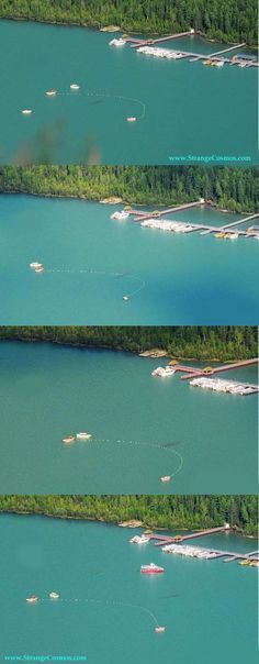 """STRANGE """"WATER MONSTER"""" SIGHTING - 4 SHOT SEQUENCE - LOCH NESSIE IN CANADIAN LAKE?"""