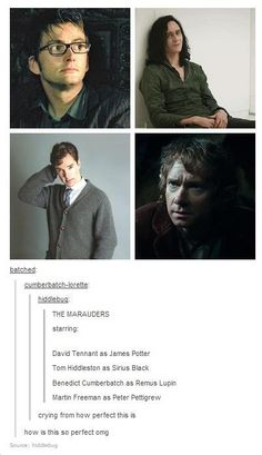 Hiddleston as Sirius, YESSSSSSSS! Not sure about David Tennant as James, considering he played Barty Crouch Jr. And of course I just love the excuse of putting Benedict Cumberbatch and Martin Freeman in something together, even if it's hypothetically.