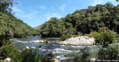 PARANÁ Parque Estadual das Lauráceas - Pesquisa Google