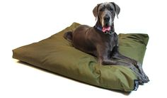 Dog Corner Dog Beds Waterproof Extra Large Olive Green £89.99 130x130x10cm