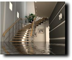 Flood Protection And What To Do If Experience A Flooded Basement.