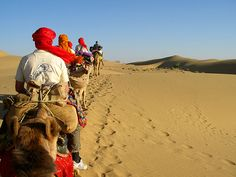 Come and feel the royalty of Rajasthan. Rajasthan has the great variety of tour and travel experiences. Nobody leaves here without priceless memories and happiness. It is the land of Kings and the Royal treatment offered here attracts a large number of tourists from all parts of the world.