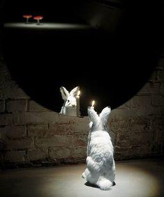 Albino  2000  stuffed hare, mirror, candle  150 x 150 x 60 cm  Heino Collection