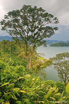 Lake Arenal Costa Rico