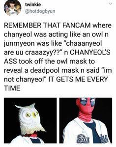 Exo n chanyeol Im deaddd lol Chanbaek, Kaisoo, Kyungsoo, Funny Kpop Memes, Exo Memes, Shinee, K Pop, Exo Concert, Xiuchen