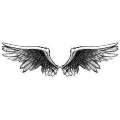Angel Wings Picture: Picture of Angel Wings