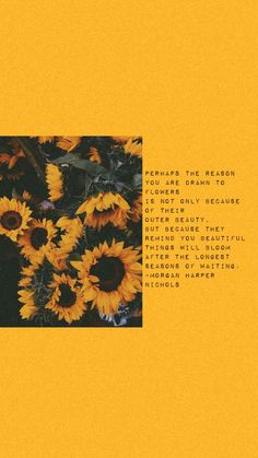 Time and the New Year — Kyla Richey - Sunflower quotes - Cute Quotes, Words Quotes, Sayings, Quotes Rindu, Poetry Quotes, Daily Quotes, Aesthetic Iphone Wallpaper, Aesthetic Wallpapers, Wallpaper Quotes