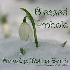 Hello and Blessed Imbolc to all. Today is more than just Super Bowl Sunday and Groundhog day, it is also the Pagan holiday of Imbolc celebrated on February of each year (some will celebrate o… Imbolc Ritual, Samhain, Fire Festival, Festival Lights, Irish Festival, Durga, Yule, Pagan Festivals, Season Of The Witch
