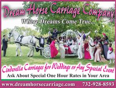 This is what Dream Horse Carriage is all about. #Happy #Clients! www.dreamhorsecarriage.com