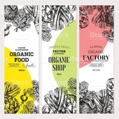 Find Organic Food Banner Collection Fresh Vegetables stock images in HD and millions of other royalty-free stock photos, illustrations and vectors in the Shutterstock collection. Food Design, Menu Design, Banner Design, Design Design, Organic Packaging, Tea Packaging, Food Packaging Design, Packaging Ideas, Speisenkarten Designs