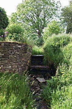 Welsh garden, Arne Maynard