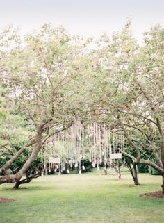 Wedding Reception, Private Residence, Flowers by: Poppies & Posies, Photo: Jen Huang - Southhampton Wedding http://caratsandcake.com/judeandpaul