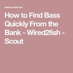 How to Find Bass Quickly From the Bank - Wired2fish - Scout