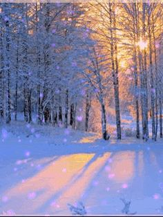 Pin Von Terry Nagel Auf Beauty   Pinterest   Winterwunderland Foto Natur Und Zauberwald
