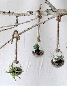 Hanging Garden Vase ==