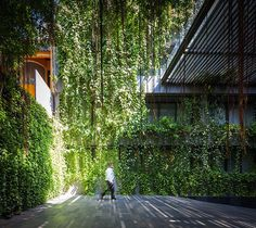 Under the Ficus Shade | Bangkok, Thailand | TROP #landscapearchitecture #hotel #design #entry #ficus
