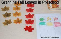 Why Do Fall Leaves Change Colors? #PlayfulPreschool • The Preschool Toolbox Blog