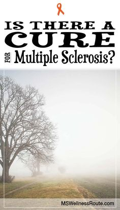 Learn how to reverse the symptoms of MS.