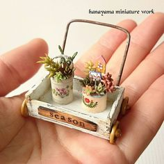 Miniature suculentas♡ ♡ By hinamama Miniature Plants, Miniature Dolls, Cute Crafts, Diy Crafts To Sell, Mini Craft, Tiny Treasures, Mini Things, Miniature Furniture, Miniture Things