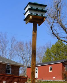 free purple martin house plans | landscaping ideas | pinterest
