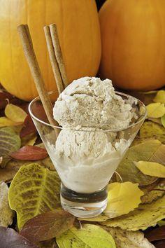 Pumpkin Spice Frozen Yogurt Ingredients: 1 C Greek yogurt, strained 1 C pumpkin puree 1 T Sweet-n-Natural 1 t pumpkin pie spice