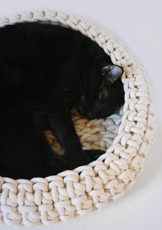 Any kind of cat bed that would look decent in our house. Check Groupon Goods for deals - Cat Beds For Every Style