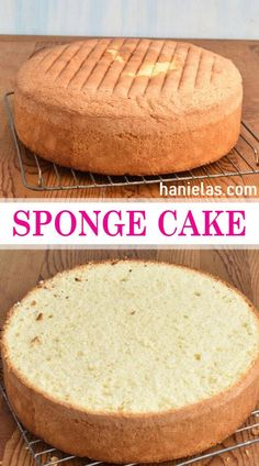Easy Sponge Cake Recipe and troubleshooting tips More from my siteEasy Sponge CakeEasy Sponge Ingredient Sponge Cake – Biskvit – Let the Baking Begin!Cake Recipes Easy Ingredient Sponge Cake – Biskvit – Let the Baking Begin! Easy Sponge Cake Recipe, Easy Vanilla Cake Recipe, Chocolate Cake Recipe Easy, Sponge Cake Recipes, Chocolate Chip Recipes, 9 Inch Cake Recipe, Chocolate Desserts, Genoise Sponge Cake Recipe, Vanilla Sponge Cake