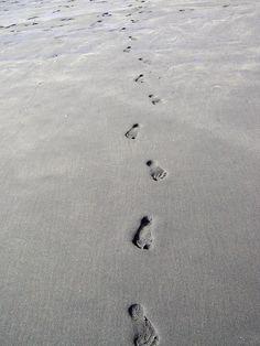 Black Sand at Piha Beach, NZ