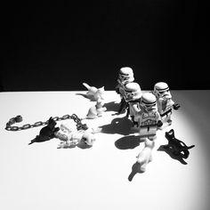 Cat Panic #brickcentral_showmeyourkitty #lego #ilovelego #legolifestyle #legofan #legomania #legoart #legomania #sslego #brickcentral #legostagram #legophotography #instalego #toys #toyhumor #toycrewbuddieslego #toylegion #toyartistry #toysphotography #toysplanet #minifigures #minifigs #starwars #stormtrooper #brickverse #cats #panic by crimeanmedal