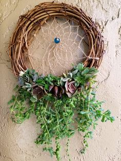 This item is unavailable Diy Wreath, Grapevine Wreath, Wall Terrarium, Succulents For Sale, Succulent Wreath, Real Plants, Little Plants, Nature Crafts, Holiday Wreaths