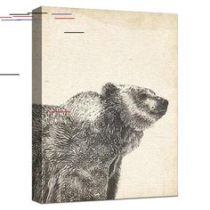 Wildlife Snapshot Grizzly Gallery Wrapped Canvas Wildlife Snapshot Grizzly Gallery Wrapped Canvas