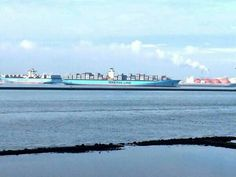 #maersk family picture