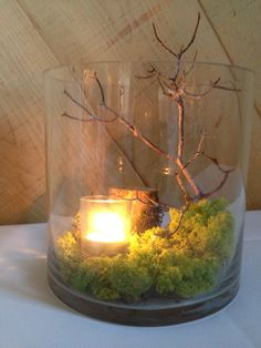 natural wedding centerpiece- This with riverrocks instead of moss (Beth hates the moss lol)