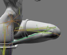 """さくらもち on Twitter: """"今日思いついた膝の構造を実装してみたが上手くいった。大腿と下腿と膝で3本、腿と脹脛に潰れ表現用の骨をそれぞれ1本の計5本、現状では一番コンパクトに構成出来たんでないか。やっと魔法の伸びる骨から卒業出来たぞ… """" Character Modeling, 3d Character, Character Design, 3d Tutorial, Digital Art Tutorial, Drawing Legs, Girl Anatomy, Anatomy Sculpture, Character Rigging"""