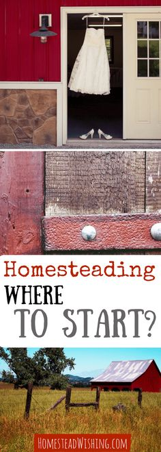 Are you ready to start homesteading? Where do you start? I have some great tips on where to start homesteading in this post, just check it out! | http://homesteadwishing.com/start-homesteading/ | Homestead Wishing, Author Kristi Wheeler | start-homesteading, homesteading-where-to-start |