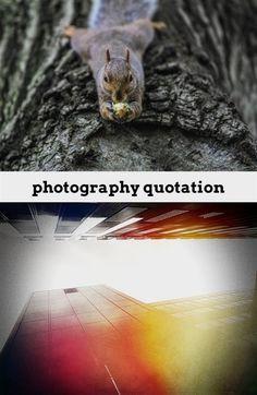 photography lighting softbox_491_20180724053337_46
