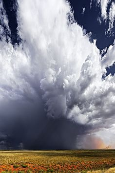 ponderation:  Storm Cloud, Pilbara, WA by Christian Fletcher