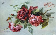 old postcard- C. Klein