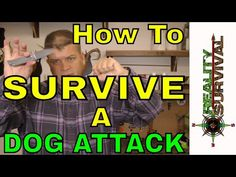 How To Survive A Dog Attack | Urban Survival Site