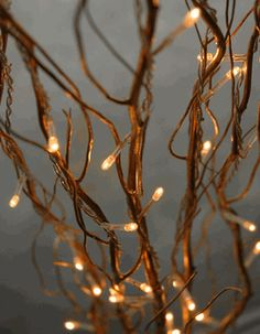"""Lighted Branches Natural Curly Willow Branches 39"""" Gold Plug In (5 branches)"""