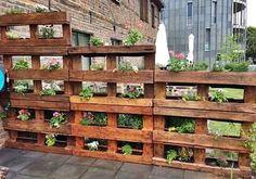 Horta Vertical de Paletes #horta #hortaemcasa #palet #paletes #rustico #reaproveitandoanatureza #saúde #sustentabilidade