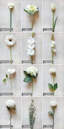 Fleurs blanches pour un - mariage