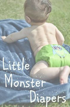 Check it out http://www.myjordaniannugget.com/2013/09/little-monster-diaper-review-and.html